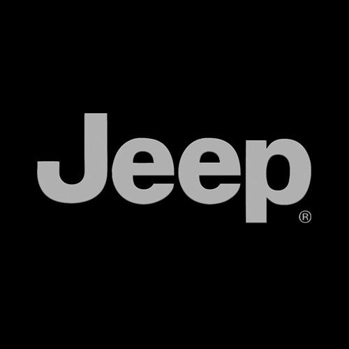 jeep-felix-botho-haas1